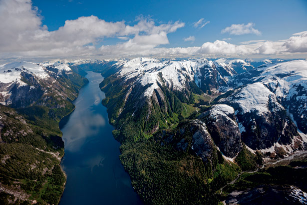 how to get to great bear rainforest