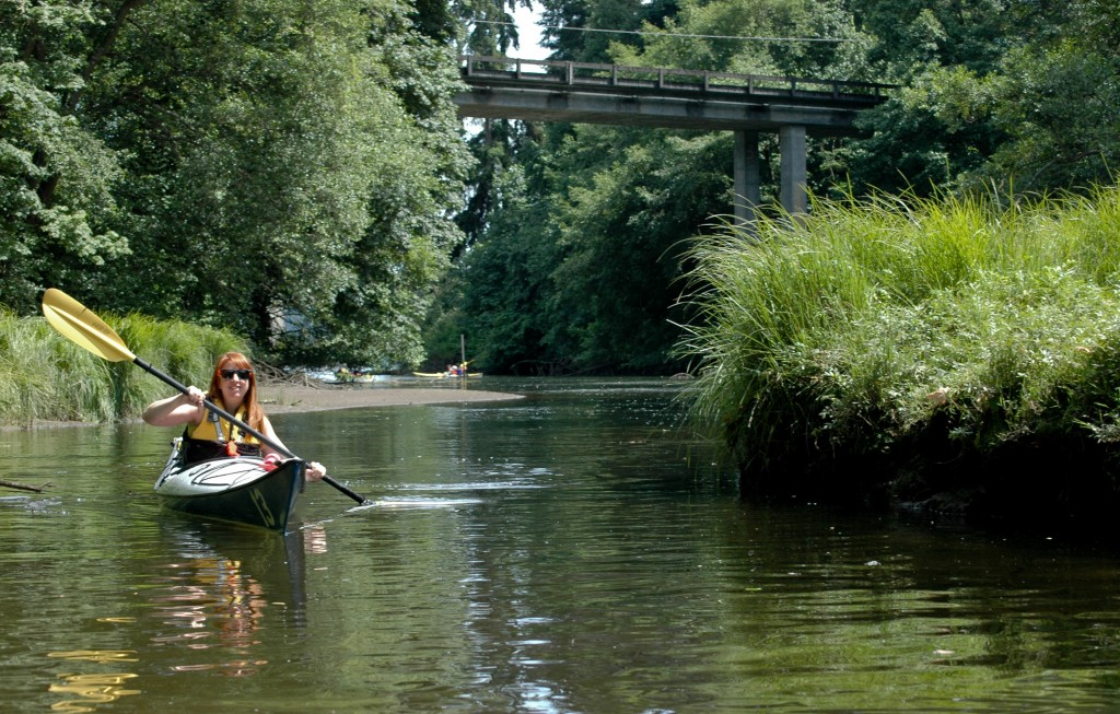 Paddling up Judd Creek has a post-apocalyptic feel to it