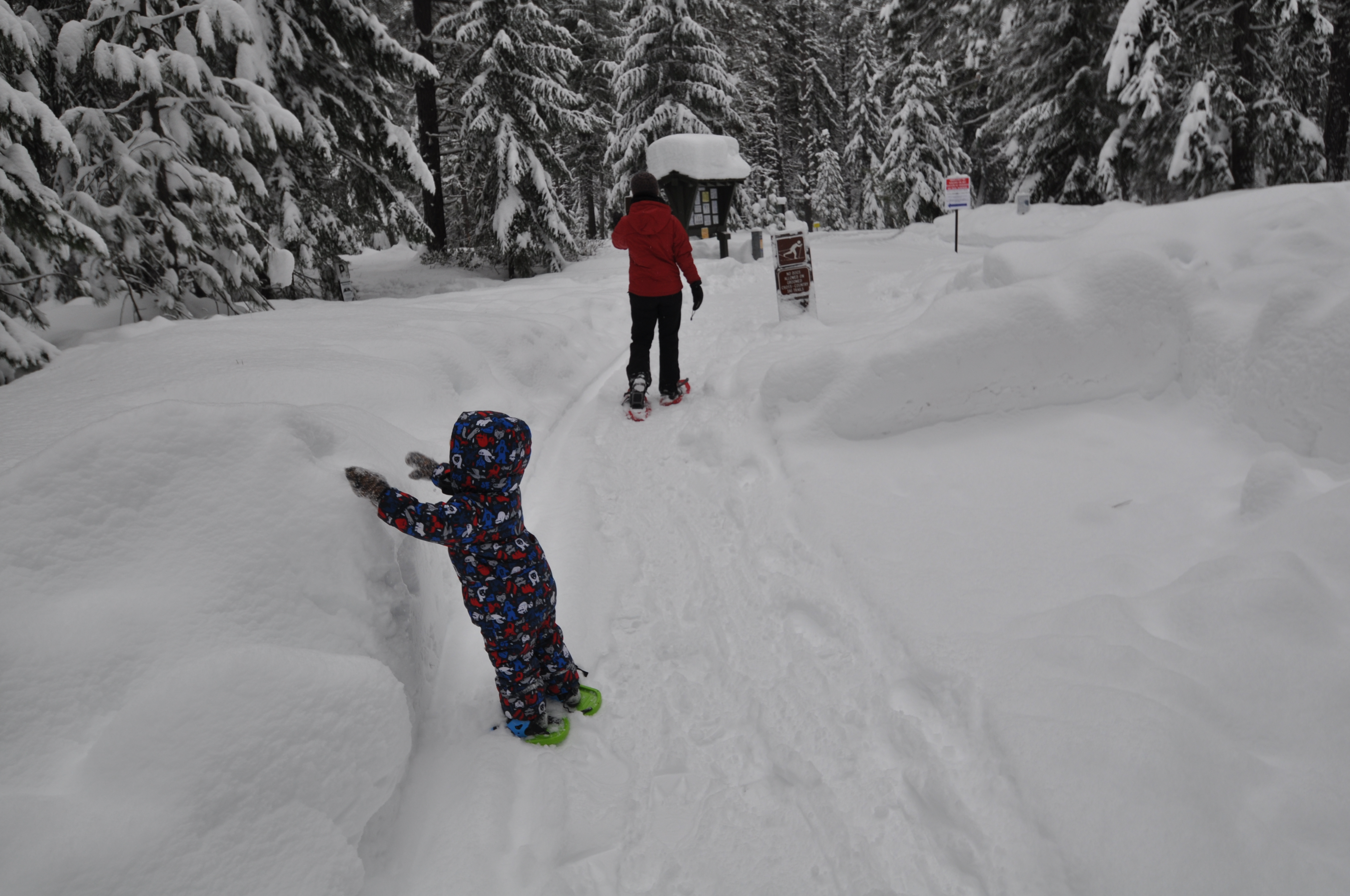 Easy snowshoe trails are a great place for kids to learn.  They traverse snowy forest and frozen lakeshore.