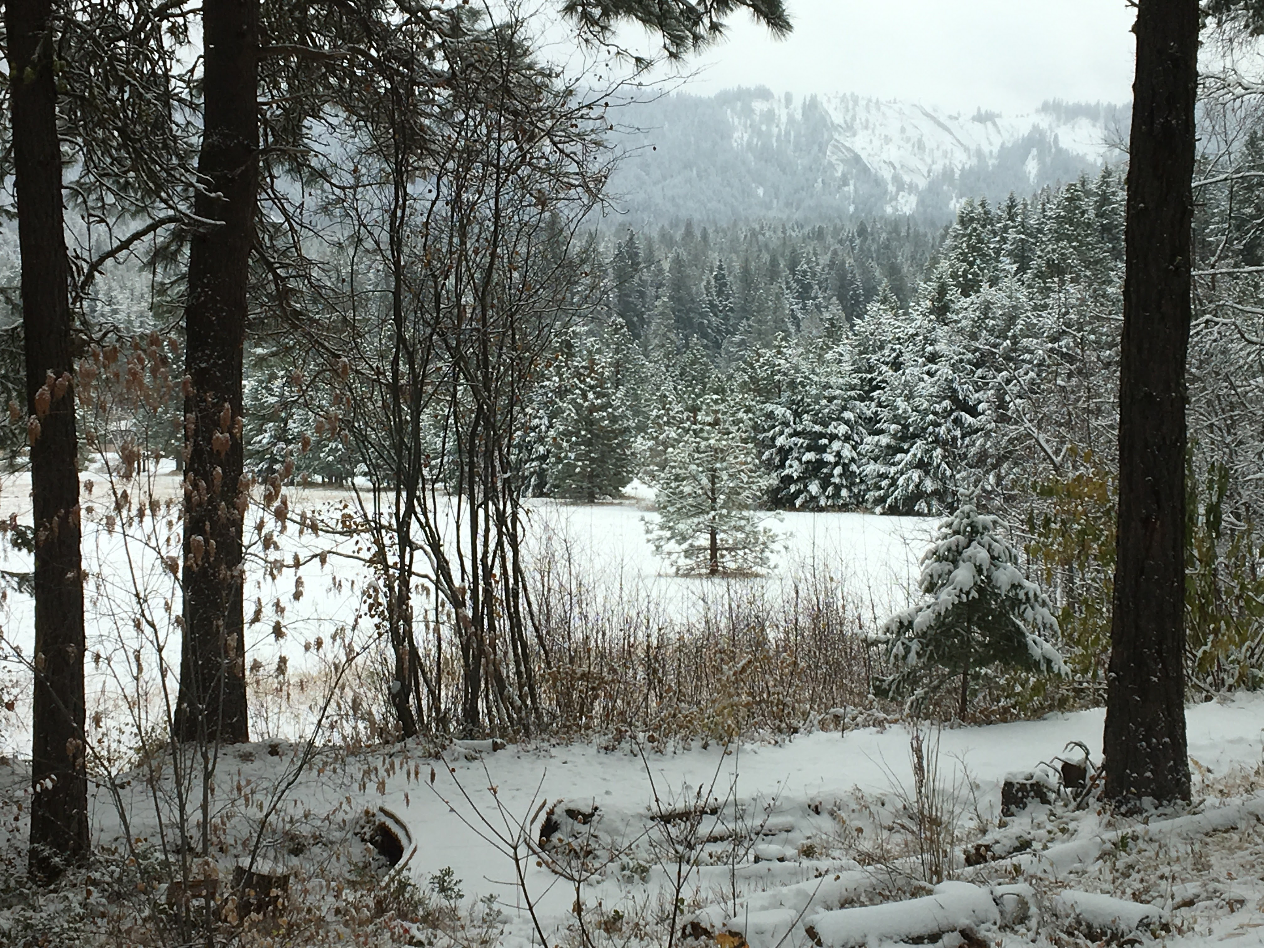 Snow came early this year to the mountains around Plain