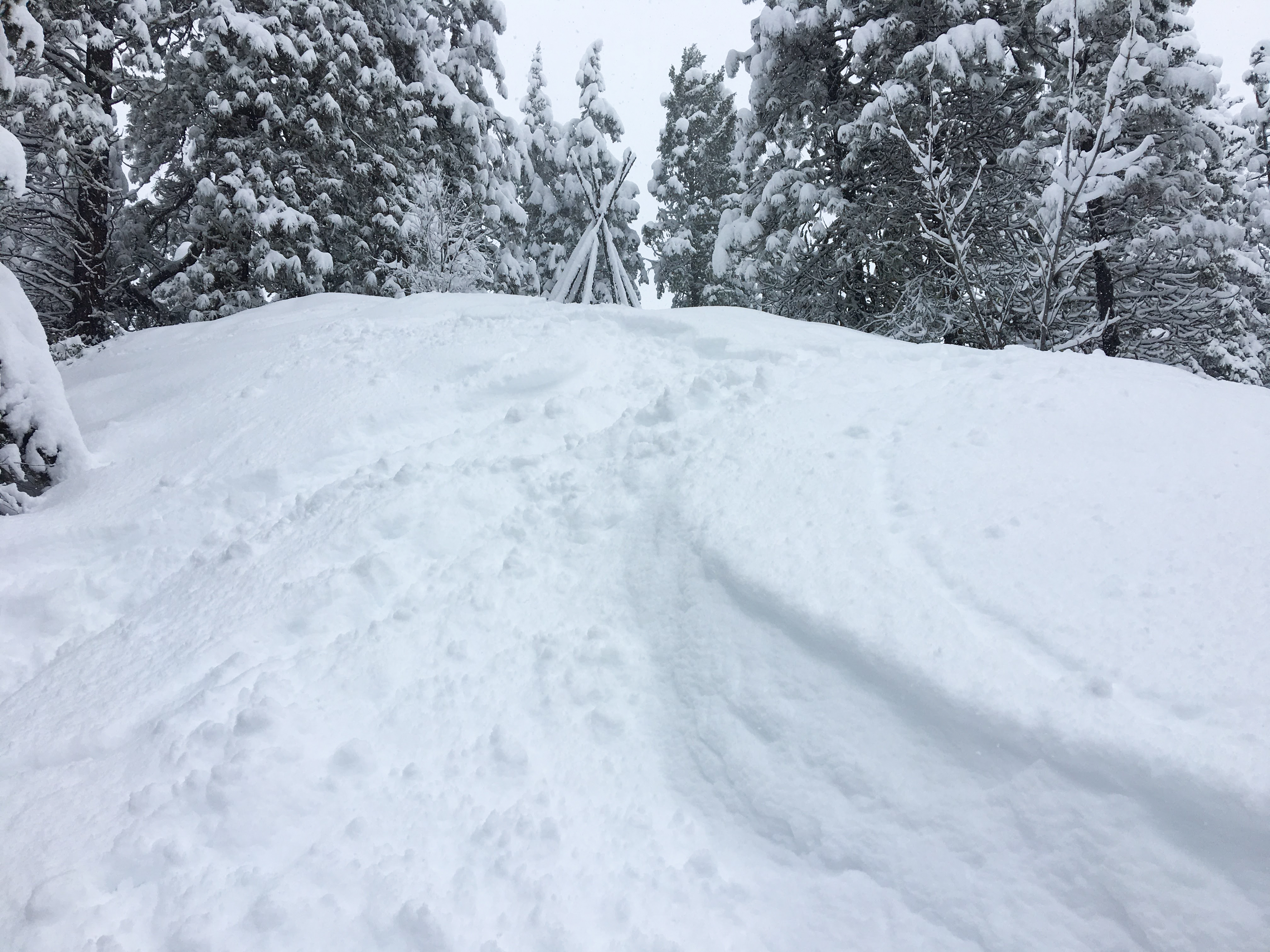 A steep incline and about a foot and a half of snow is all you need for a back country choose your own adventure